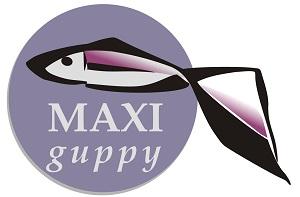 maxi guppy